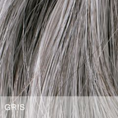 Toppik Hair Building Fibers - Color Gris